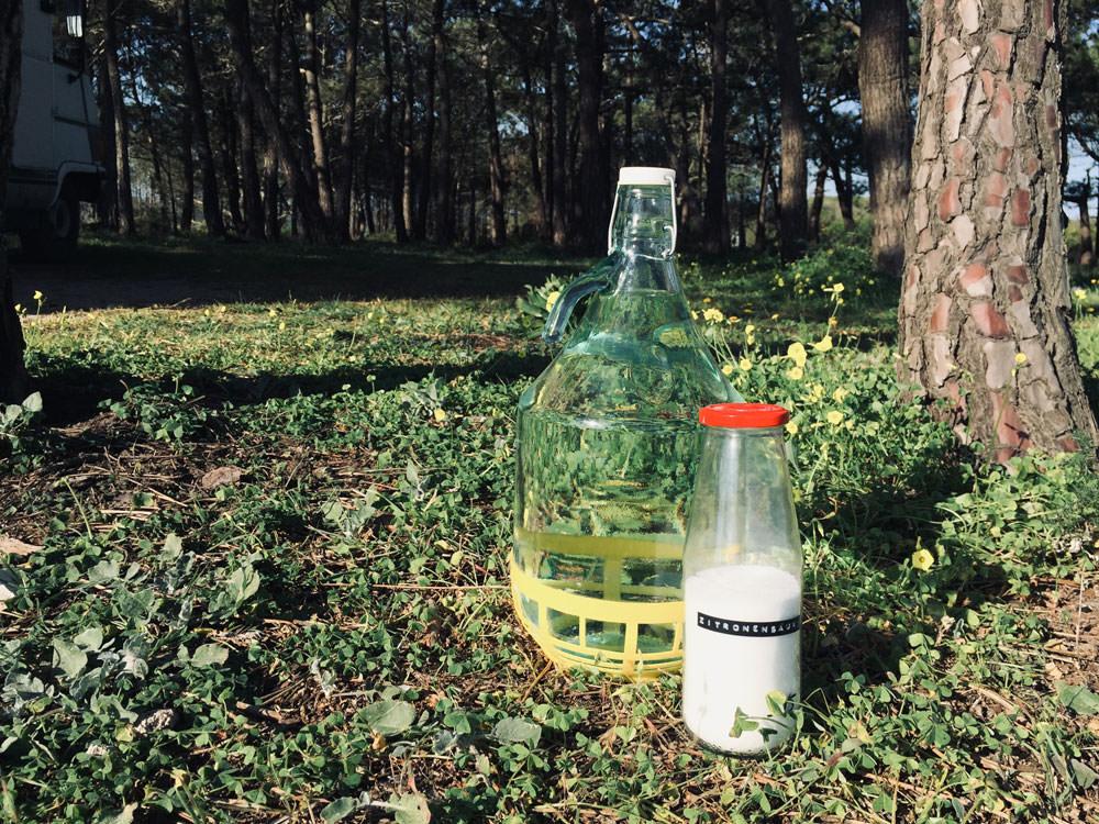 Ökologische Hausmittel: Ein Glasballon steht auf einer Wiese. Daneben steht eine Flasche mit Zitronensäure.