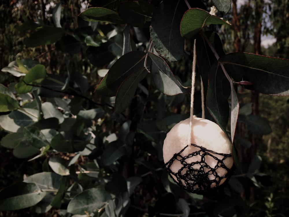 Körperpflege im Camper: Ein Stück Seife hängt an einem Baum