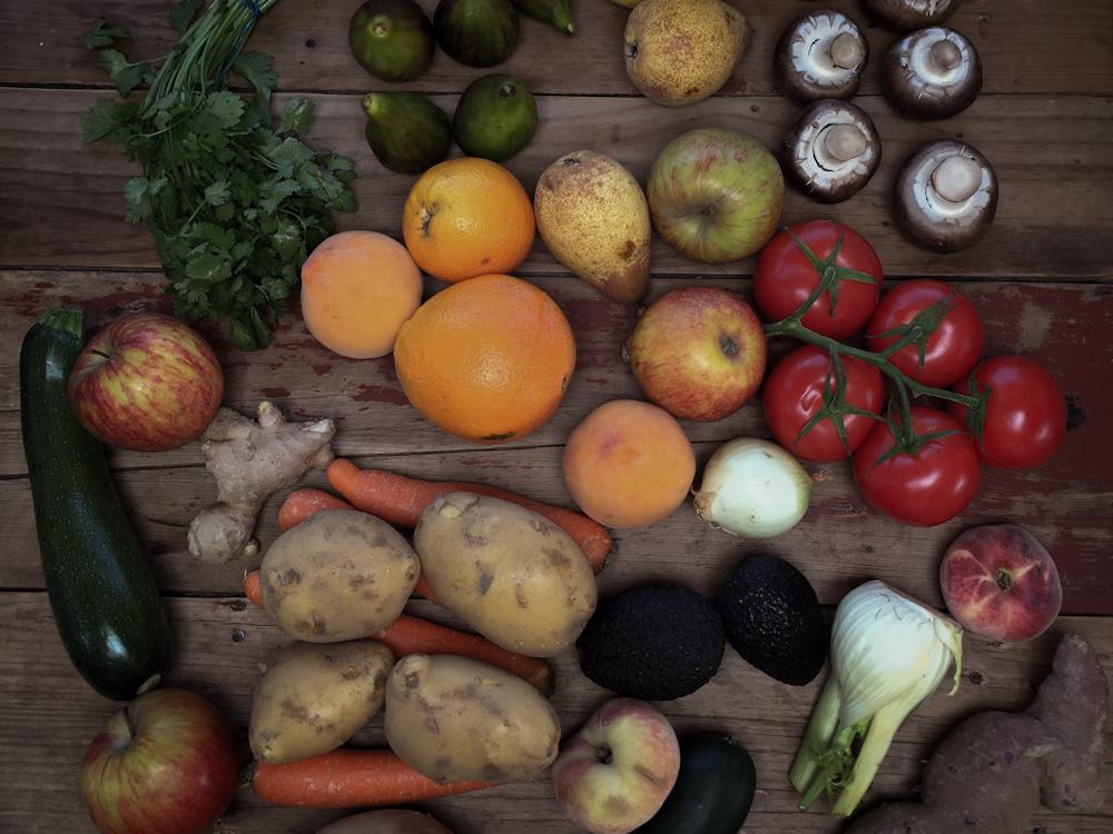 Lebensmittelverschwendung vermeiden: Die richtige Lagerung im Camper