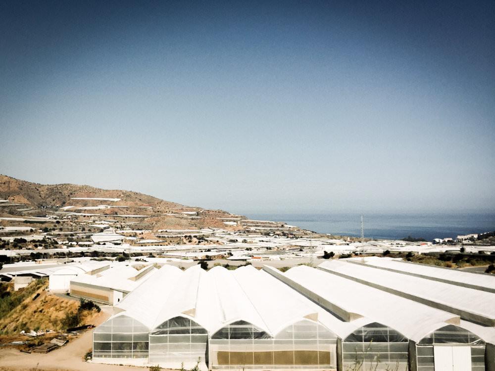 Plastikmeer in Spanien: Überall Gewächshäuser