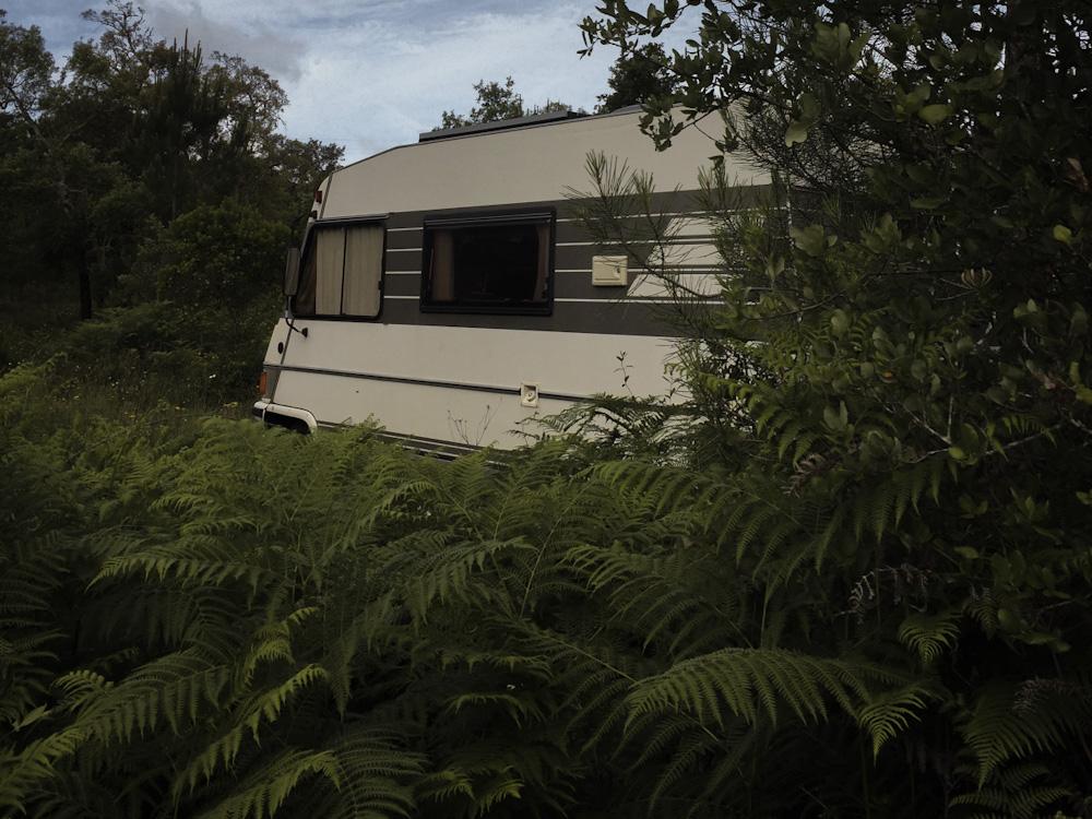 Nachhaltige Reise-Vorsätze: Das Wohnmobil steht im Grünen