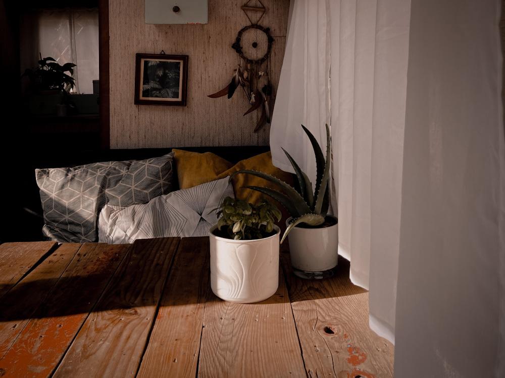 Besitz reduzieren in 5 Schritten: So passt alles in ein Wohnmobil