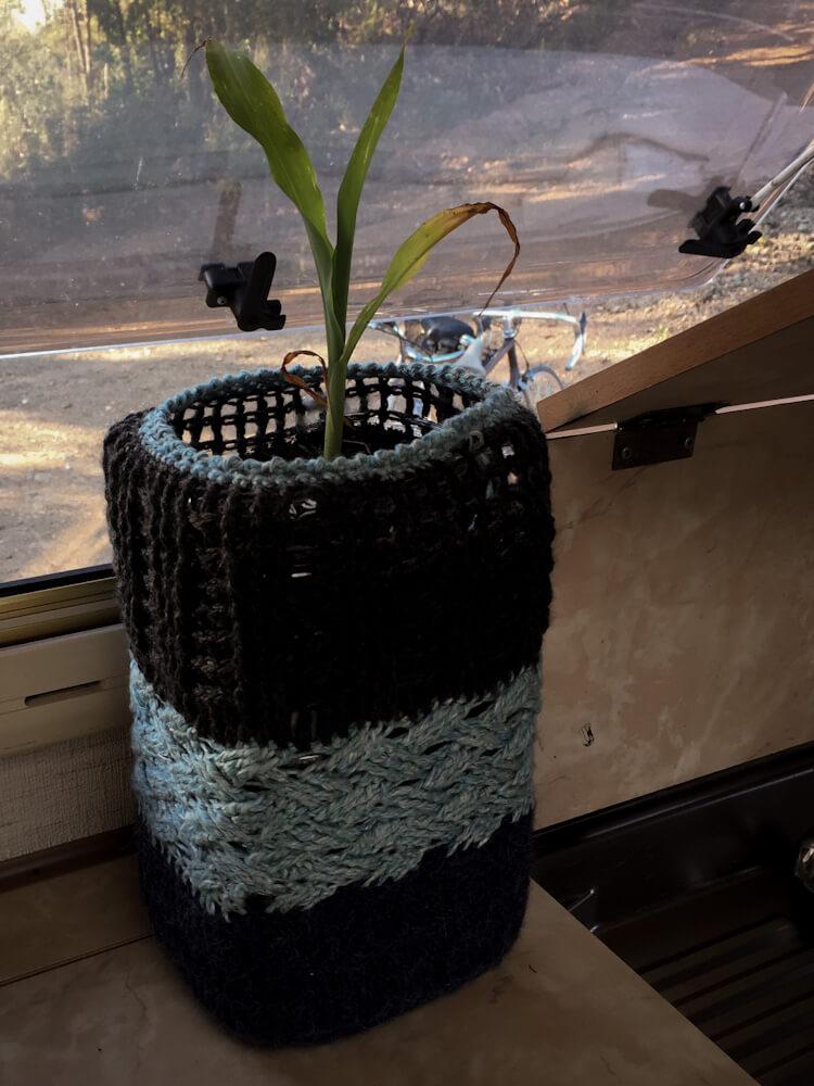 Häkeltopf, Maispflanze im Wohnmobil